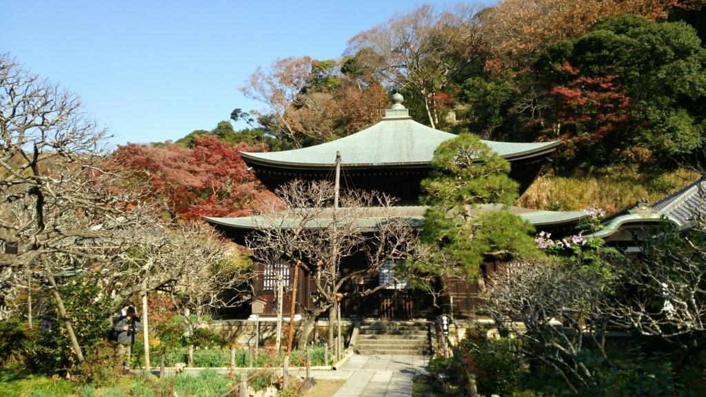 瑞泉寺本堂付近の紅葉