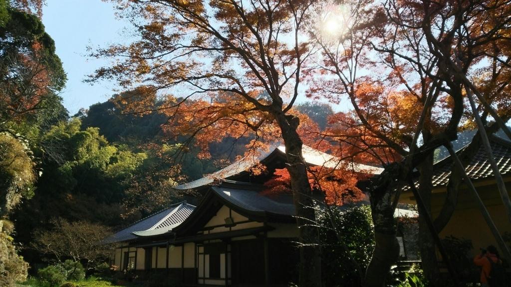 瑞泉寺庭園付近の紅葉