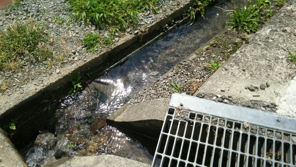 諏訪大社上社前宮の本殿に続く道の横を流れる水