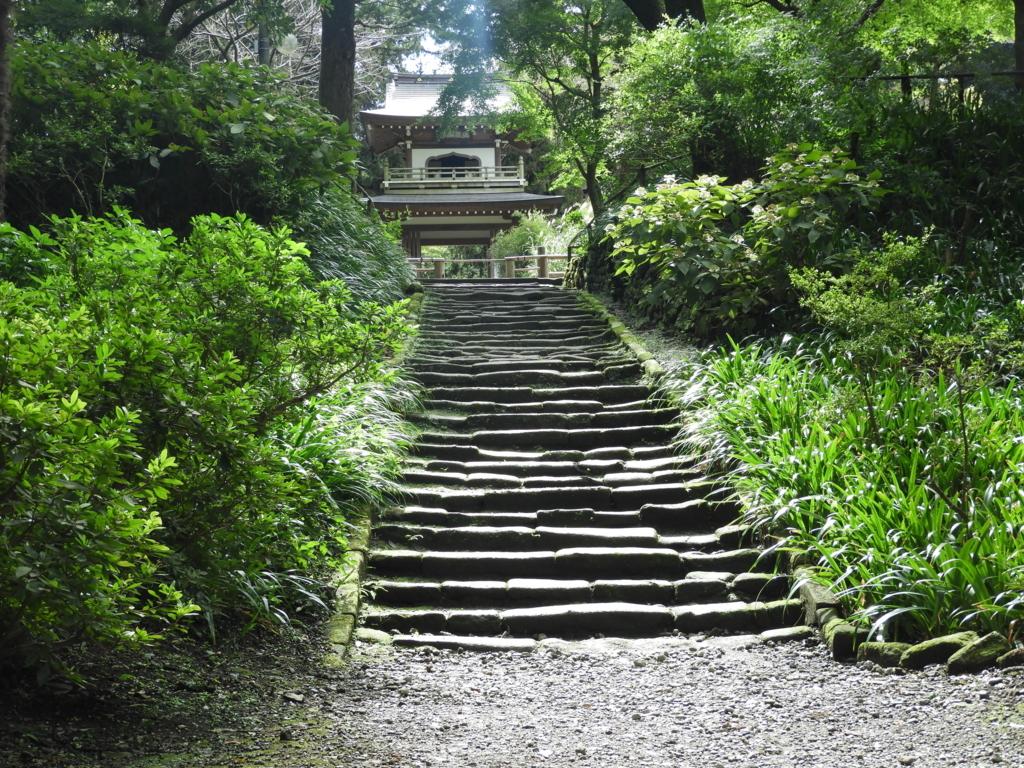 乃木坂46のWセンターが撮影を行っていた石段