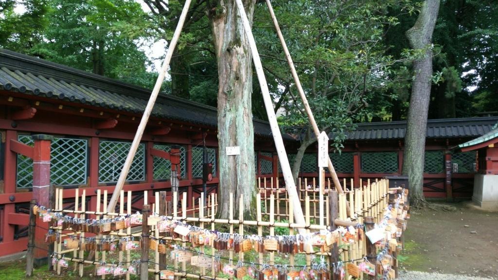 根津神社の御神木のカヤの木。周囲に設けられた柵に絵馬が無数に掛けられている。