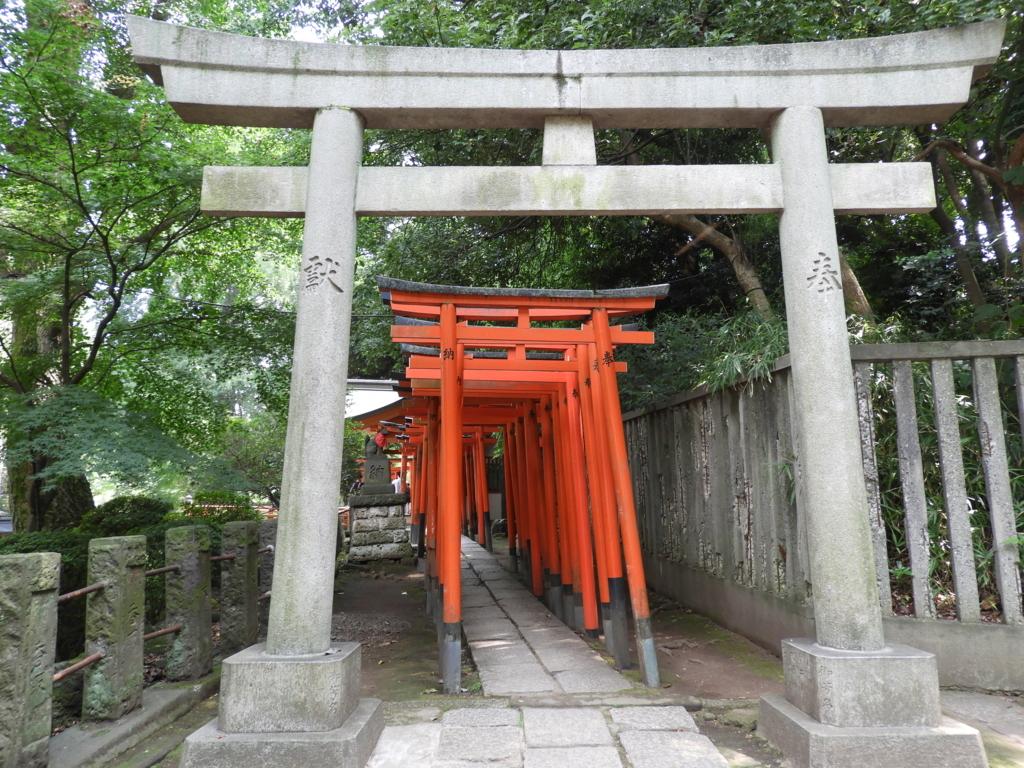 乙女稲荷神社の千本鳥居。手前の石鳥居の奥に無数の朱色の鳥居が一列に並んでいる