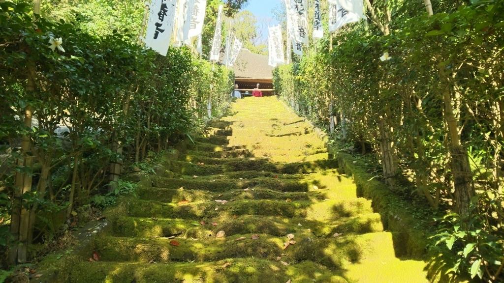 杉本寺の有名な苔の石段
