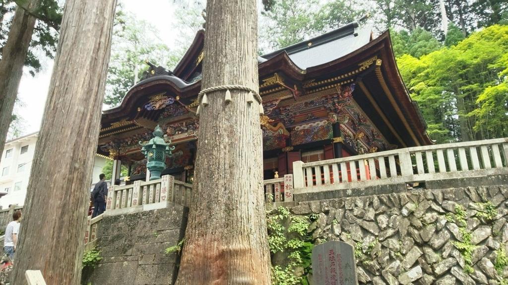 石段両脇にある樹齢800年の三峯神社のご神木。