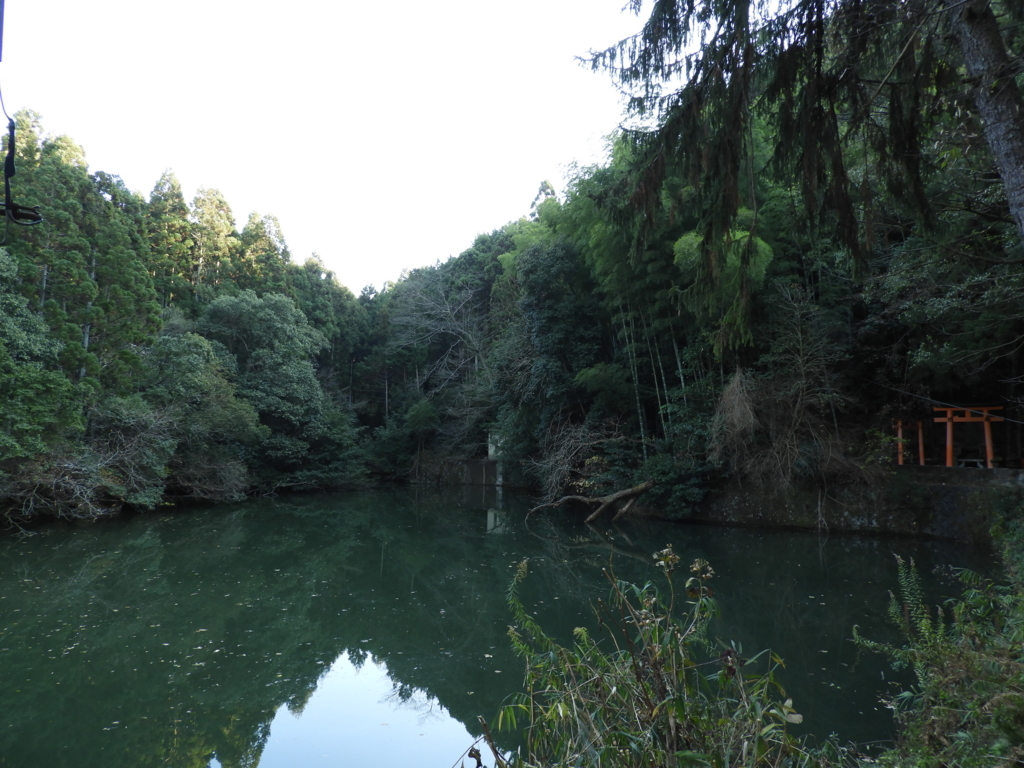 伏見稲荷大社の新池