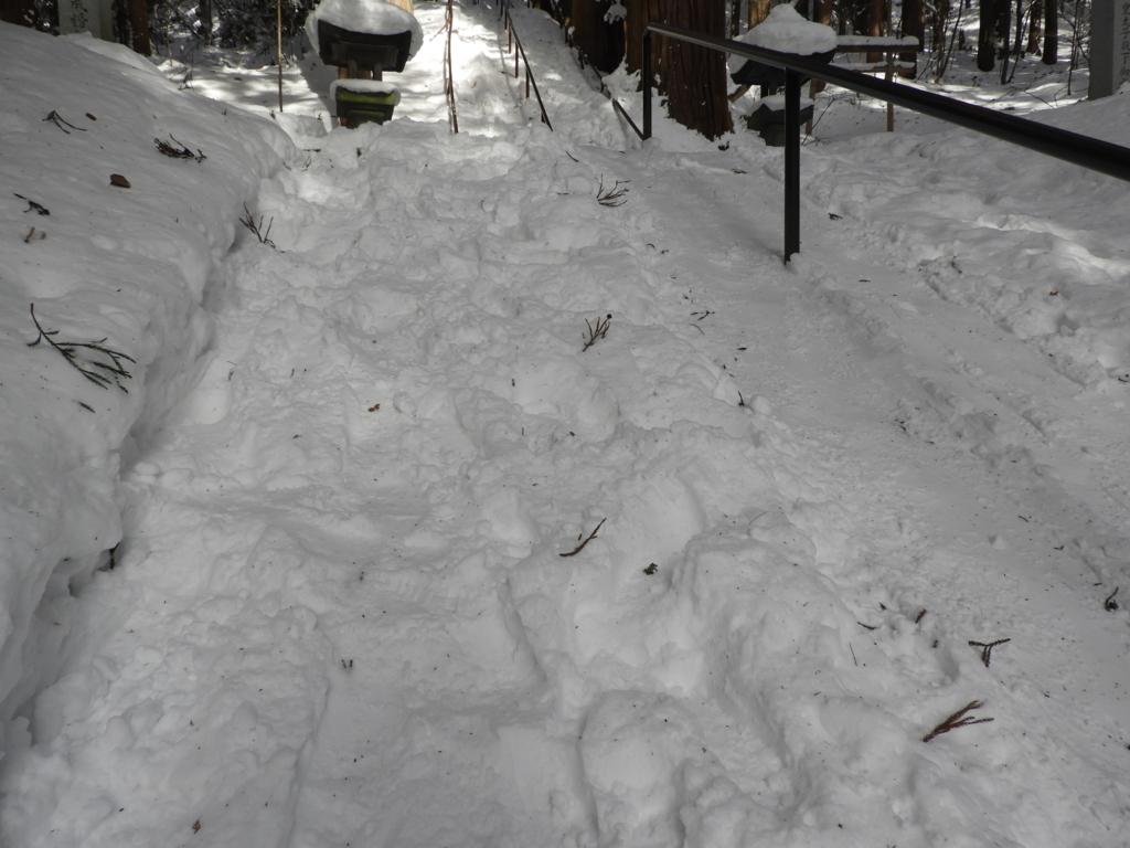 雪の下に埋まった宝光社名物の石段
