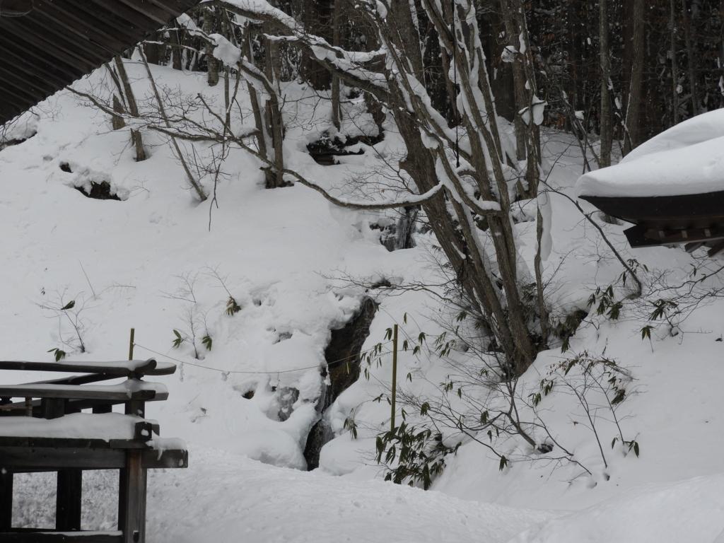 半分凍ったさざれ滝