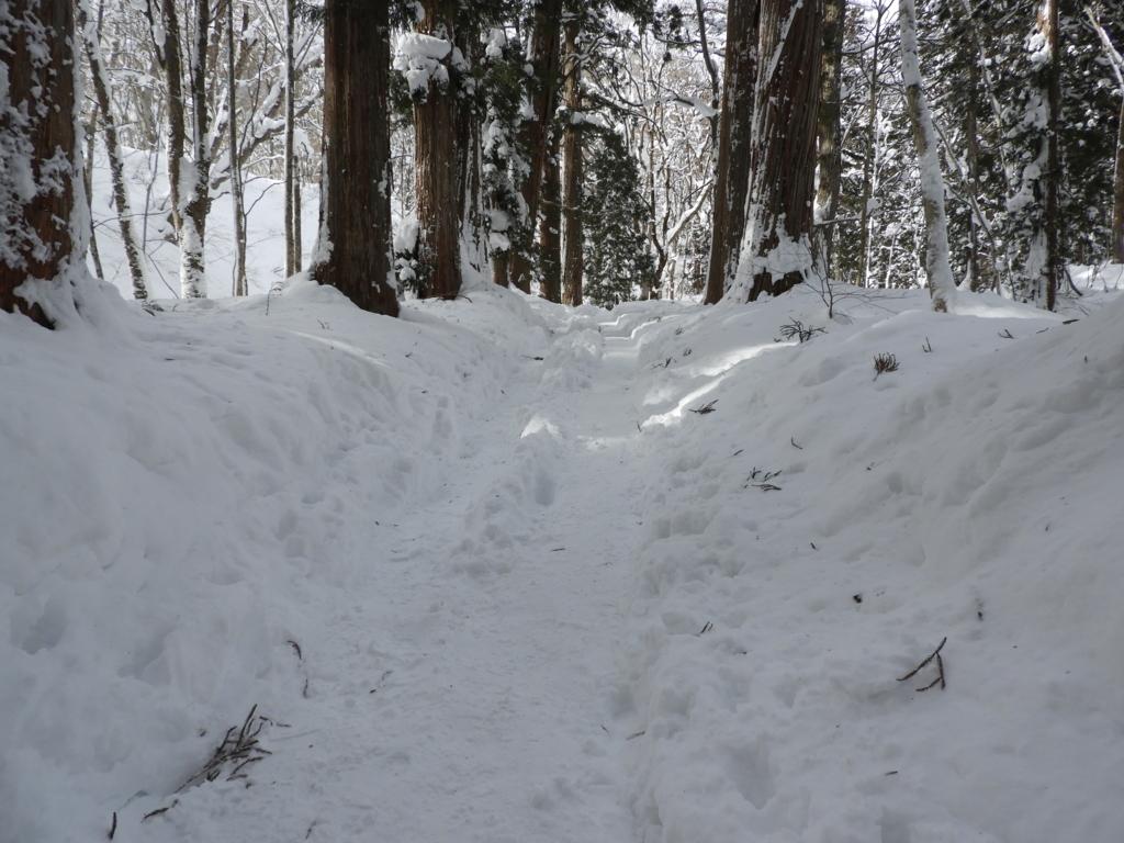 雪に埋まって坂道になった戸隠神社奥社の石段