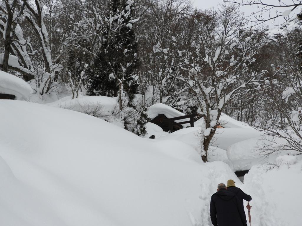 雪深い場所に位置する戸隠神社奥社と九頭龍社