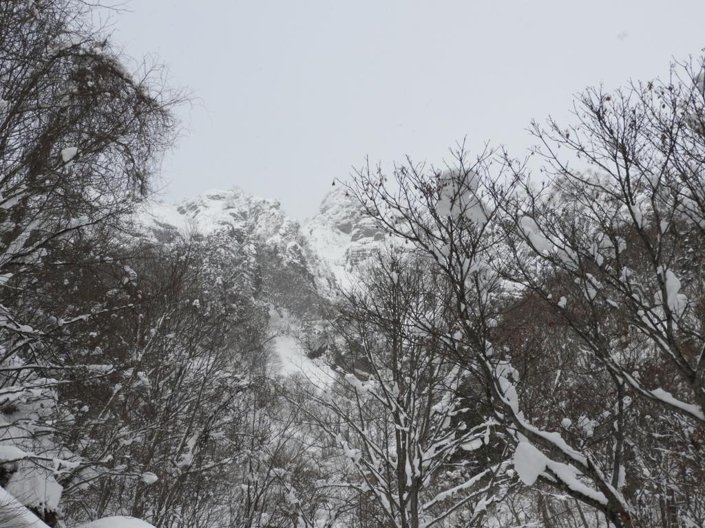 戸隠神社奥社から見た戸隠山の迫力ある眺め