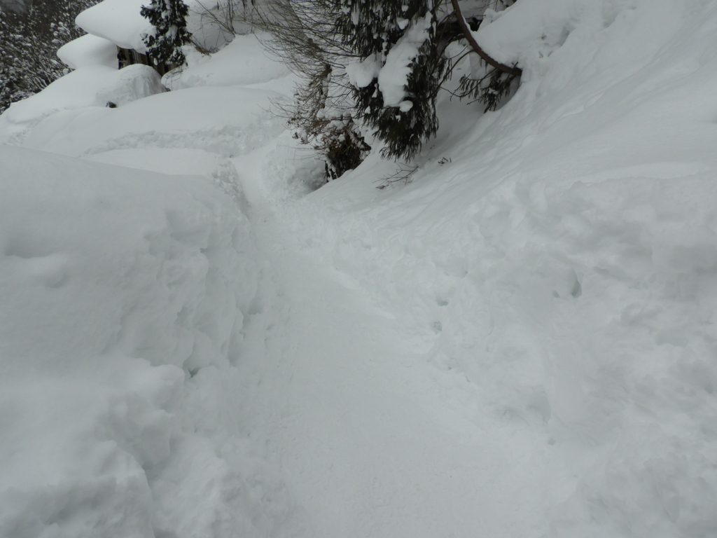 滑り台のような戸隠神社奥社直下の石段