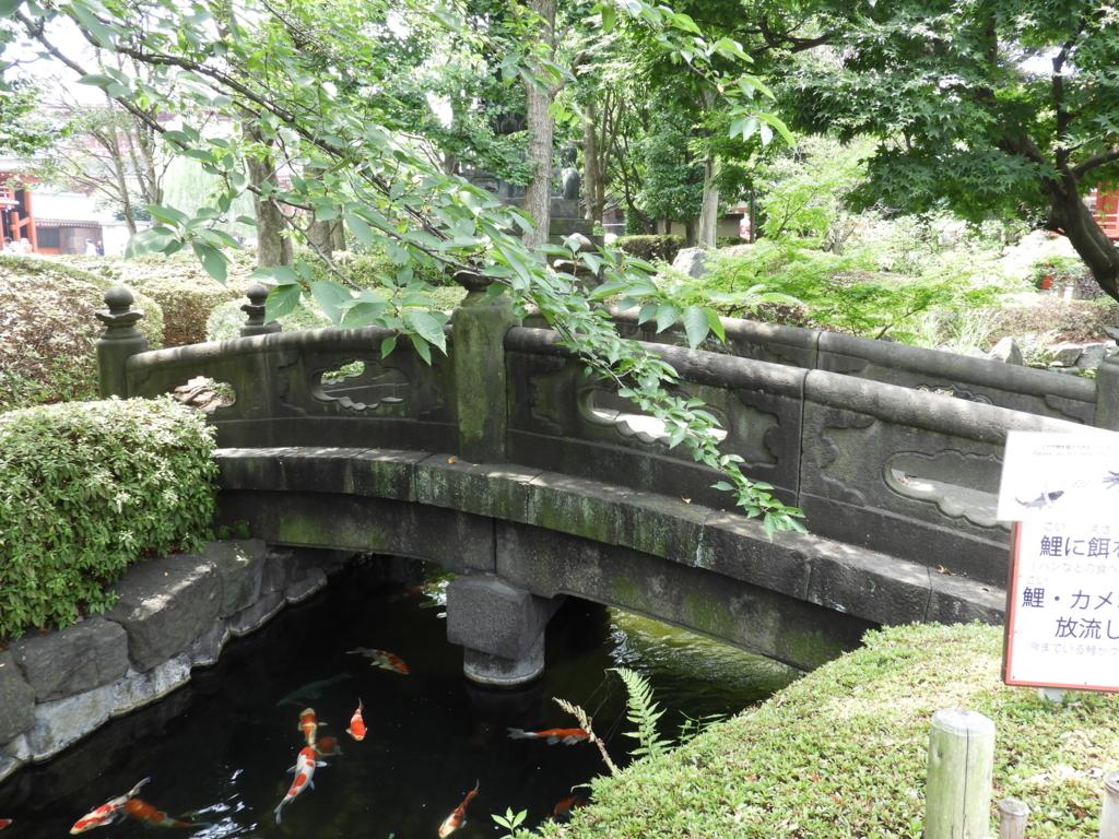 庭園内の池に架かった石橋。手入れの行き届いた植栽に囲まれ、橋の下には数多くの鯉が泳いでいる。