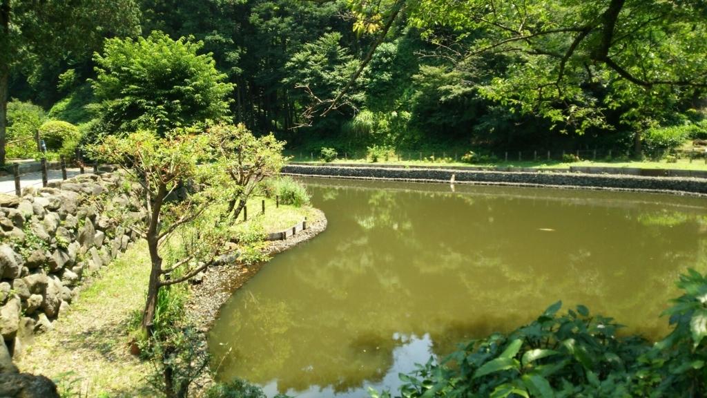 亀池ともいわれる回春院本堂前の大覚池