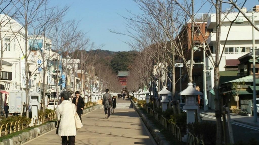 北条政子の安産を祈願して造られた鶴岡八幡宮の参道