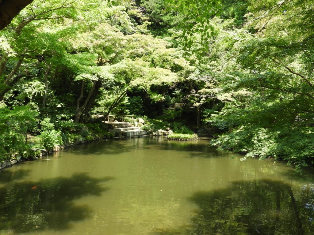 蛍放生祭や鈴虫放生祭が行われる鶴岡八幡宮の柳原神池
