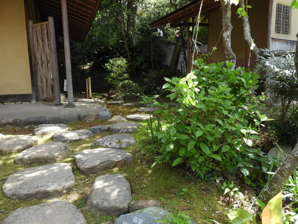 佛日庵の茶室・烟足軒を囲む苔庭
