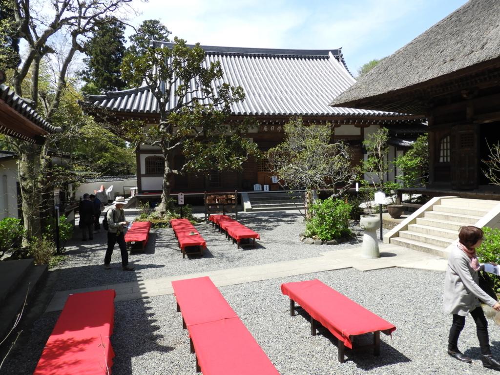 佛日庵の境内に並べられた赤い毛氈を敷いた茶席