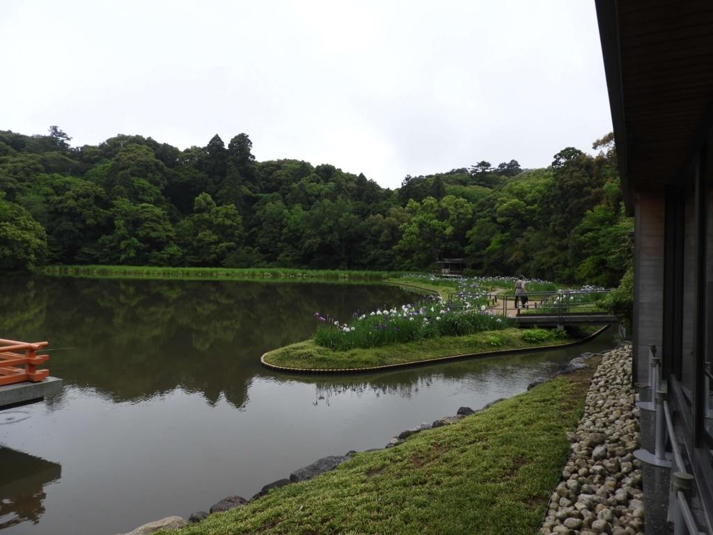 せんぐう館に隣接した「まがたま池」森に囲まれた池が中央にあり、右側の岸辺には水芭蕉が植えられている。