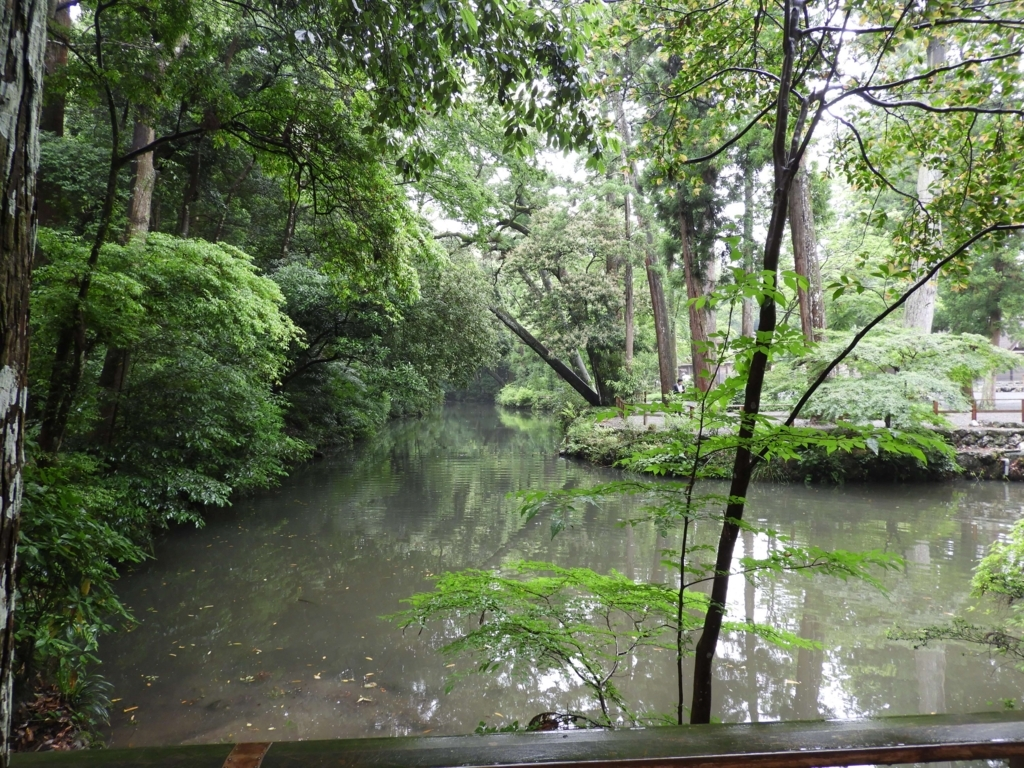 うっそうとした森と池