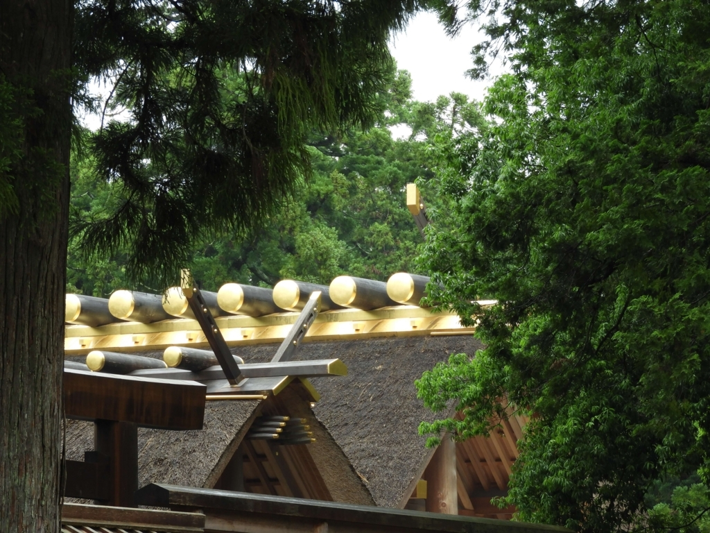 古殿地の杉の奥に見える外宮正宮の屋根。