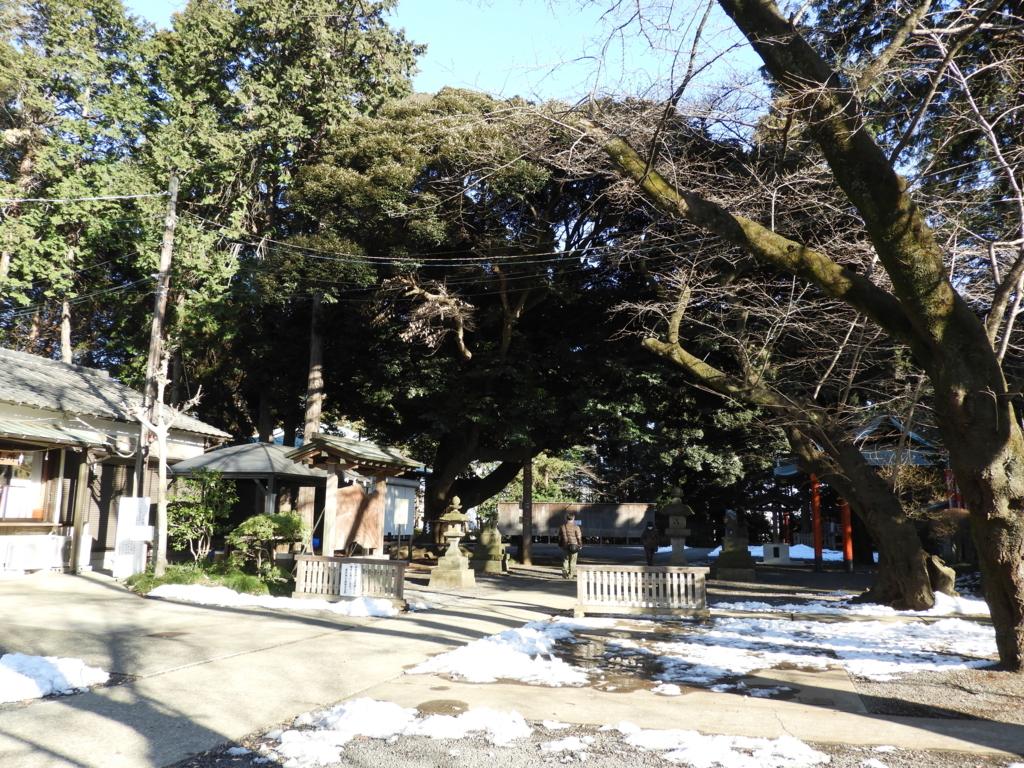 諏訪神社の広々とした敷地