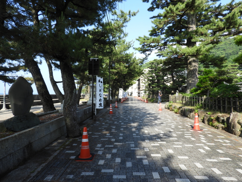 二見浦・夫婦岩表参道の印象的な松並木