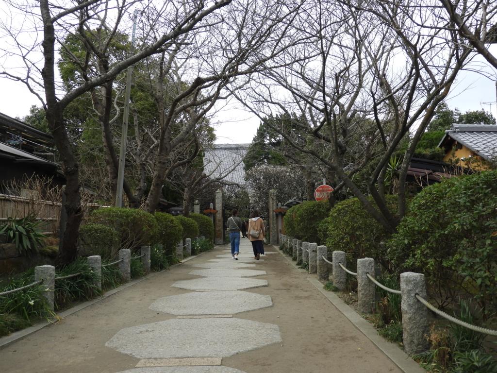 両脇に桜が植えられた宝戒寺の参道