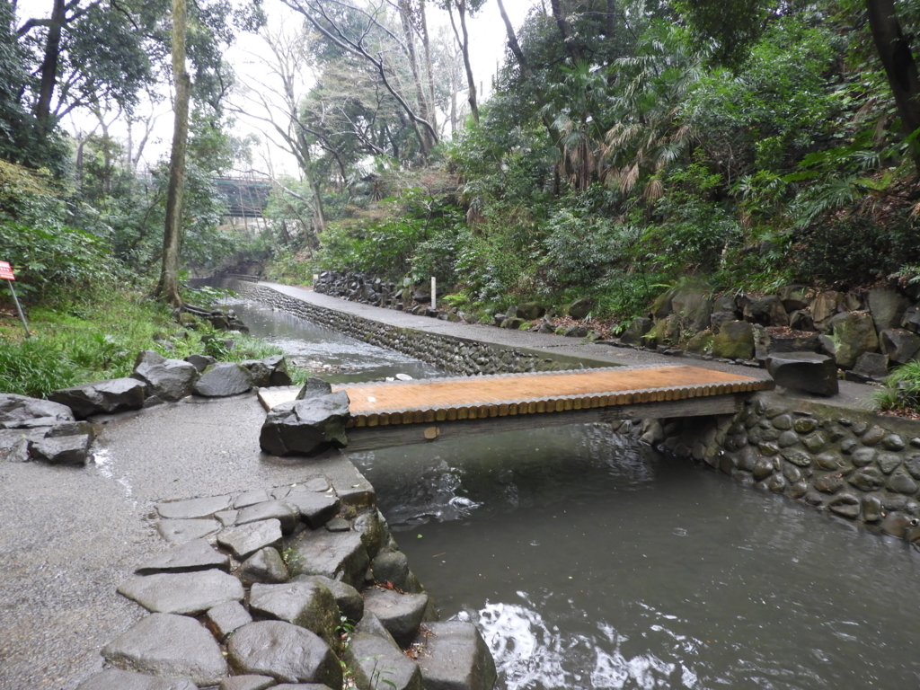 渓谷の流れに架かる渓谷橋