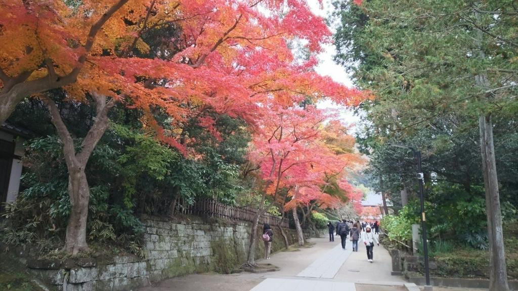 円覚寺仏殿奥の紅葉