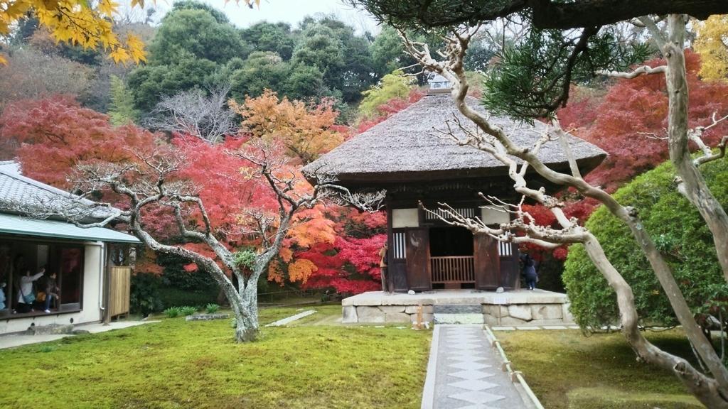 長寿寺の観音堂と紅葉
