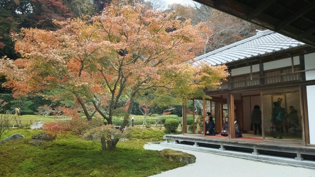 長寿寺の書院と紅葉
