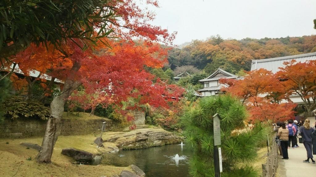円覚寺妙香池と紅葉