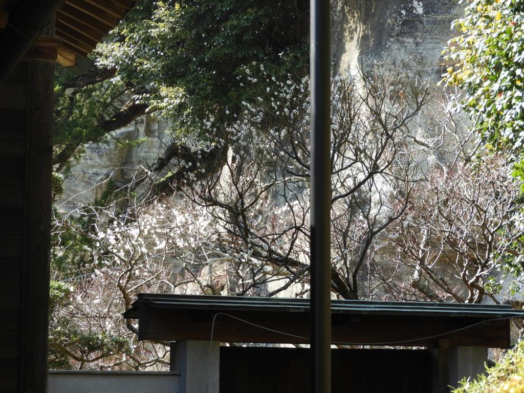 浄光妙寺裏庭の入り口