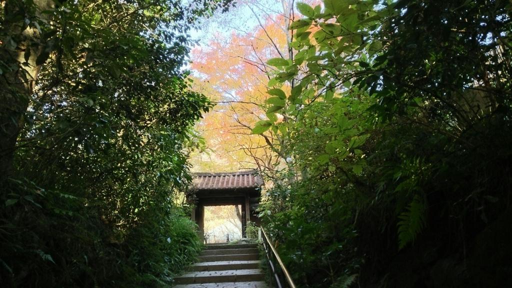 瑞泉寺山門と紅葉