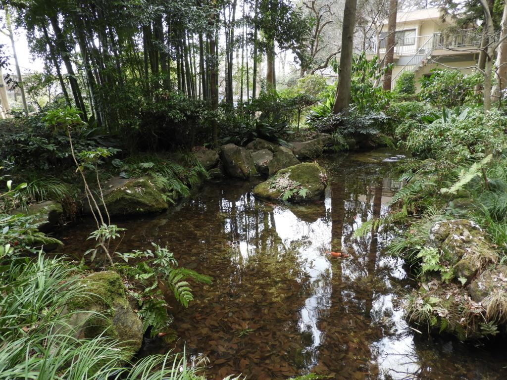「真姿の池」