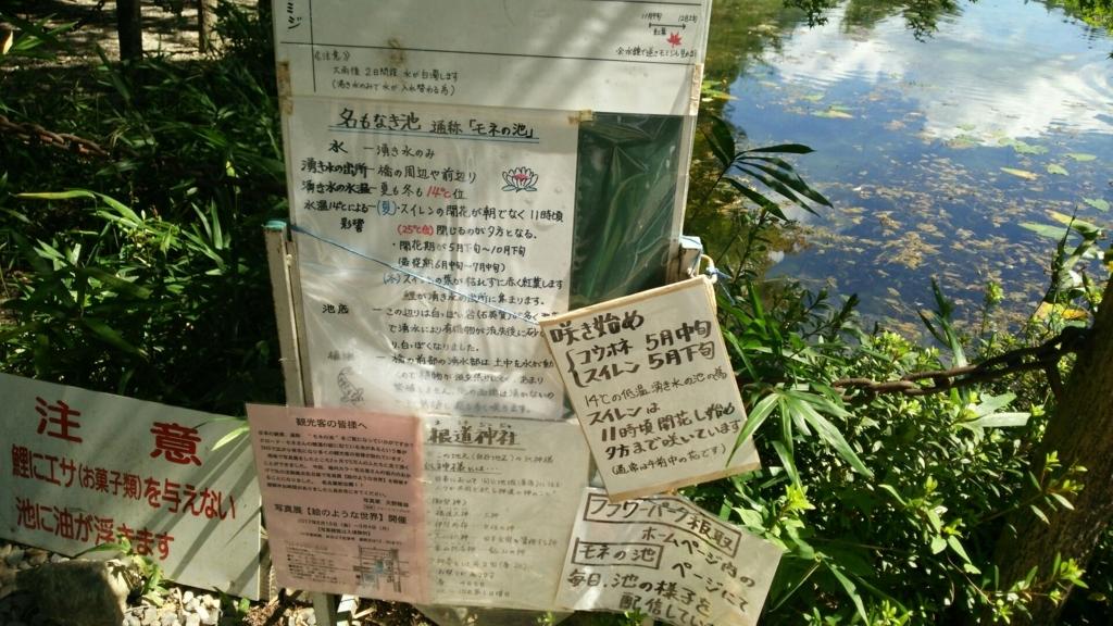 モネの池の手書きの解説