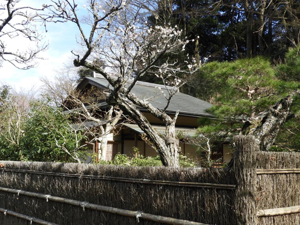 東慶寺の茶室「寒雲亭」