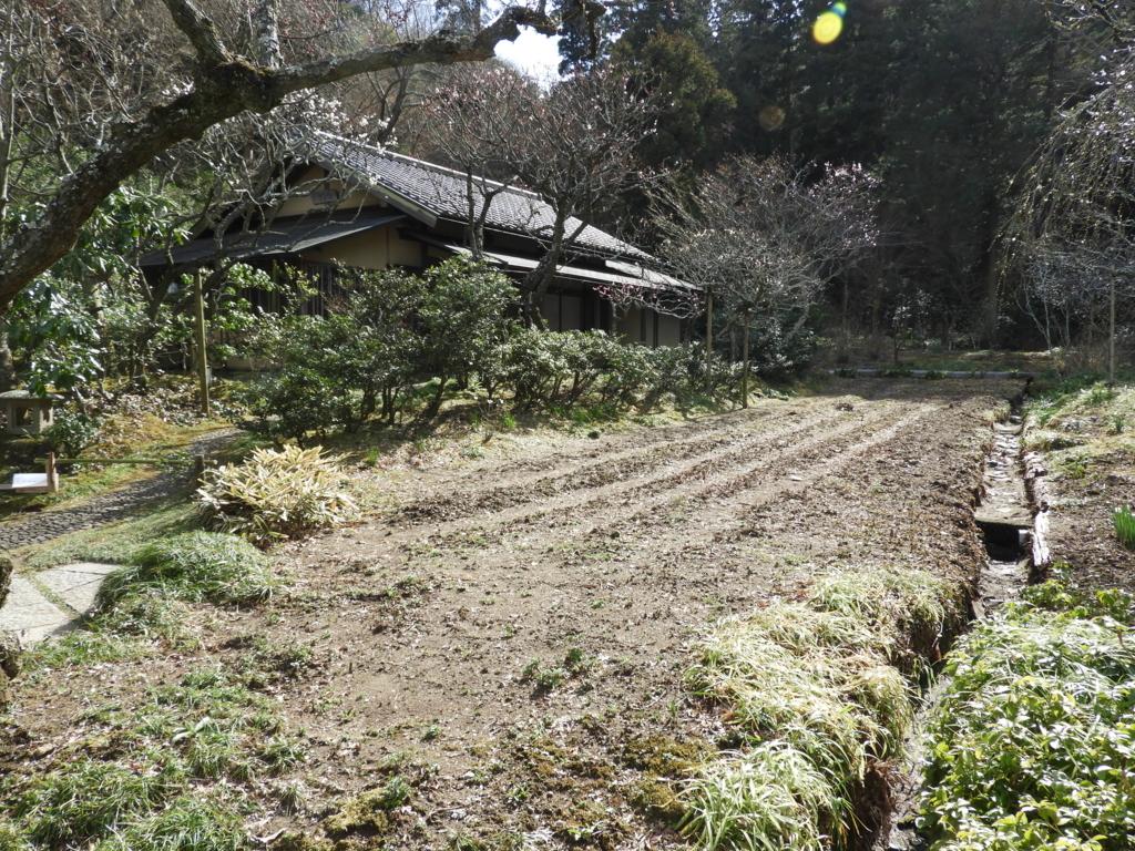 茶室「白蓮舎」と菖蒲畑