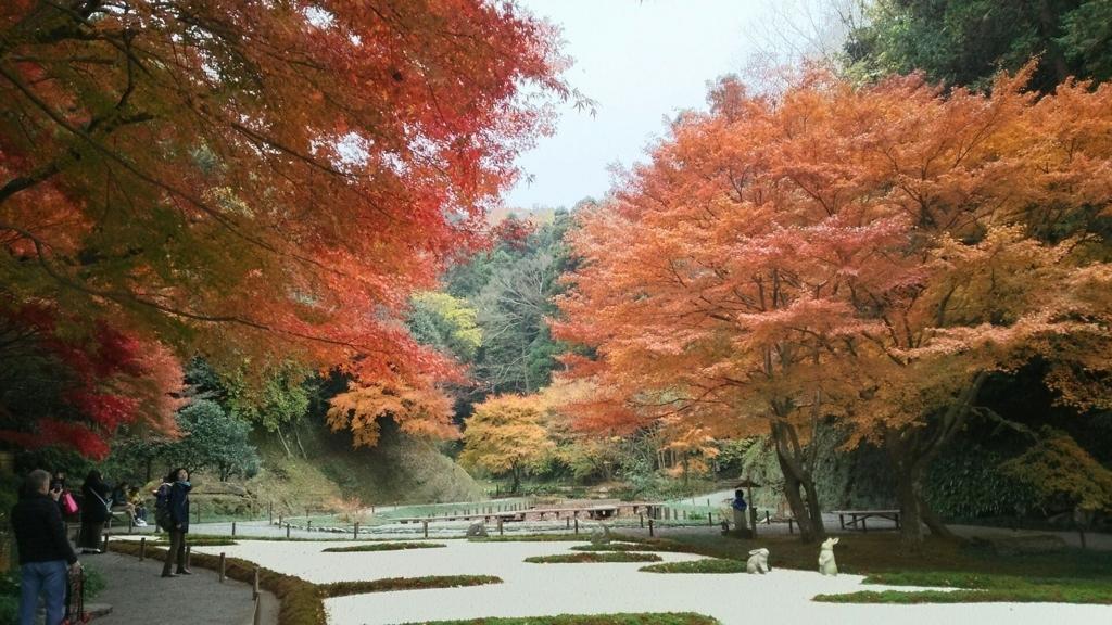 本堂後庭園の美しい紅葉
