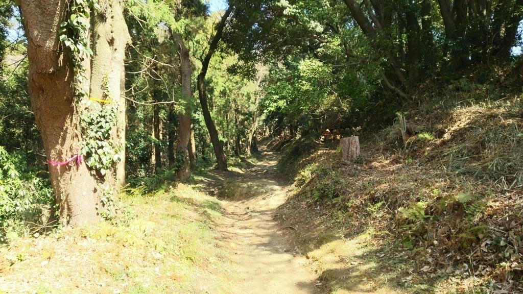 完全な山道となった参道