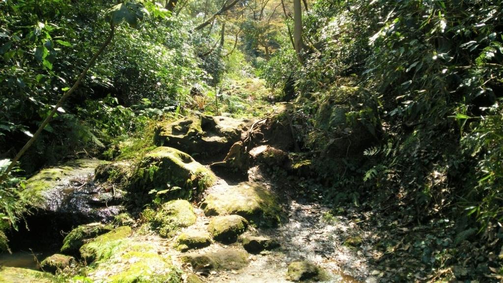 水の流れに沿って岩がゴロゴロしている参道