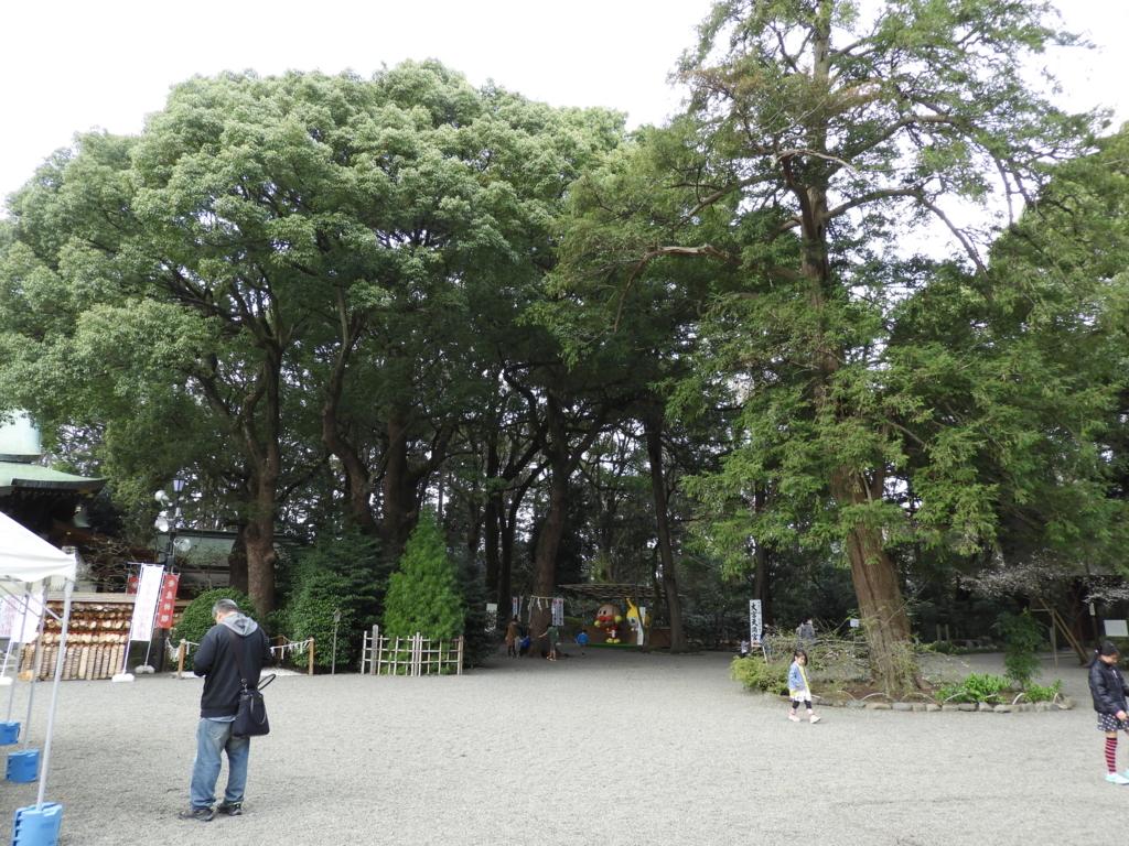 大宮氷川神社の広大な神域