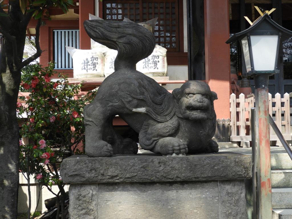 身構える体勢の珍しい形の狛犬