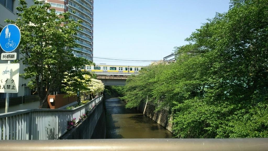 神田川沿いの光景