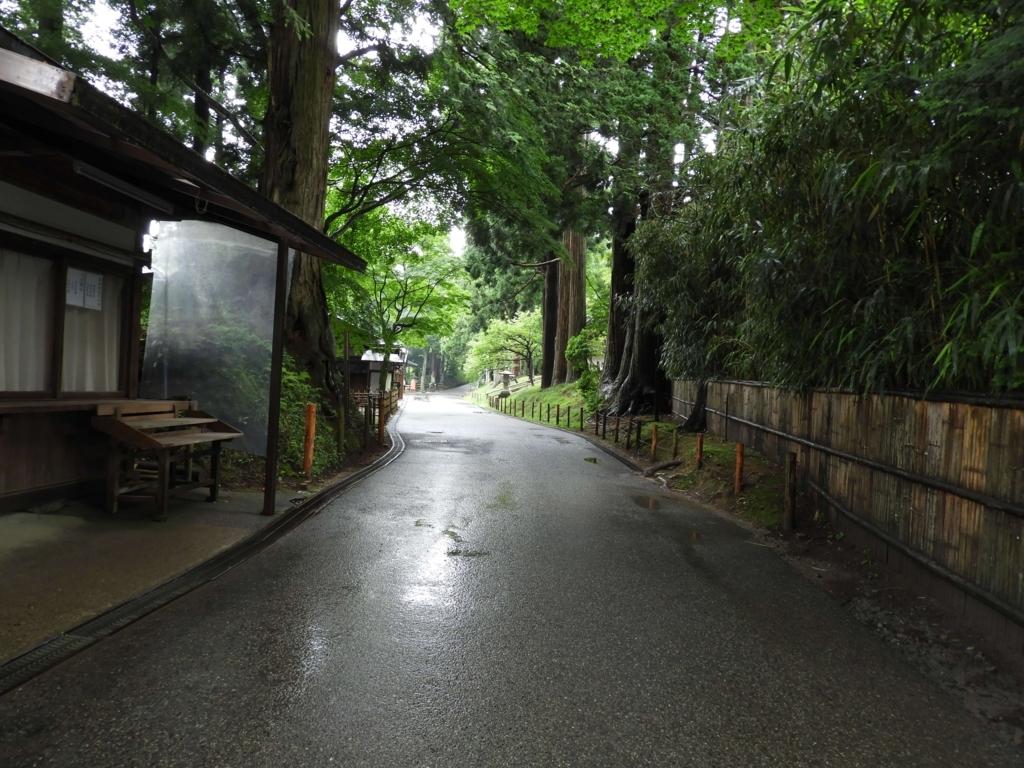森の中を抜ける道