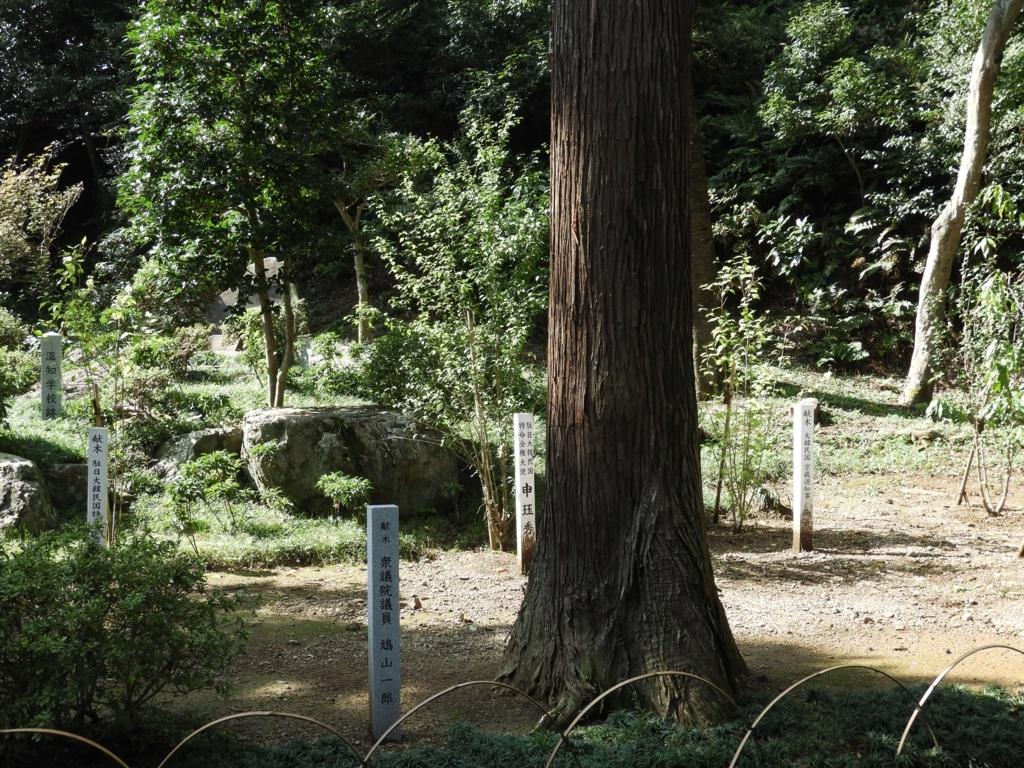 鳩山一郎の記念樹