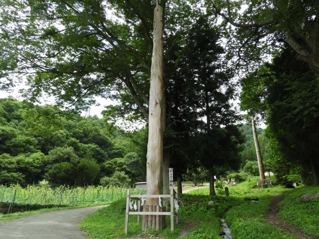上社前宮の御柱