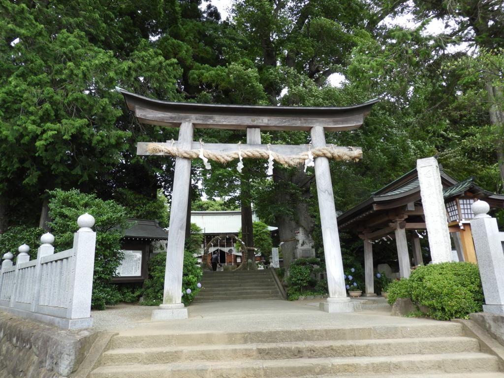 比々多神社の大鳥居