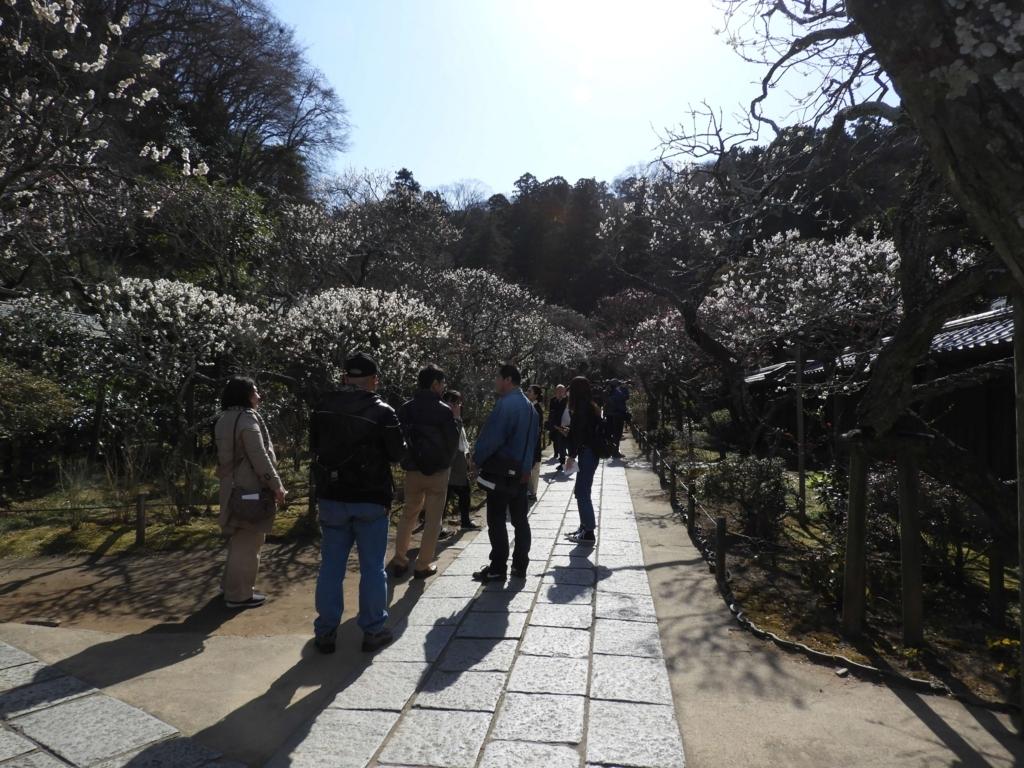 東慶寺の境内