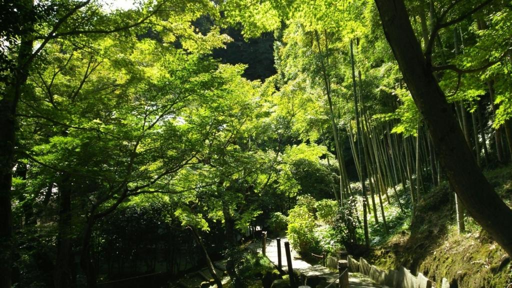 長寿寺の庭園